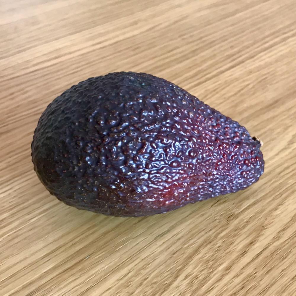 Avocat - 1 pièce