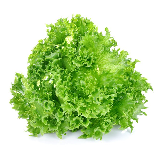 Salade Laitue - 1 pièce