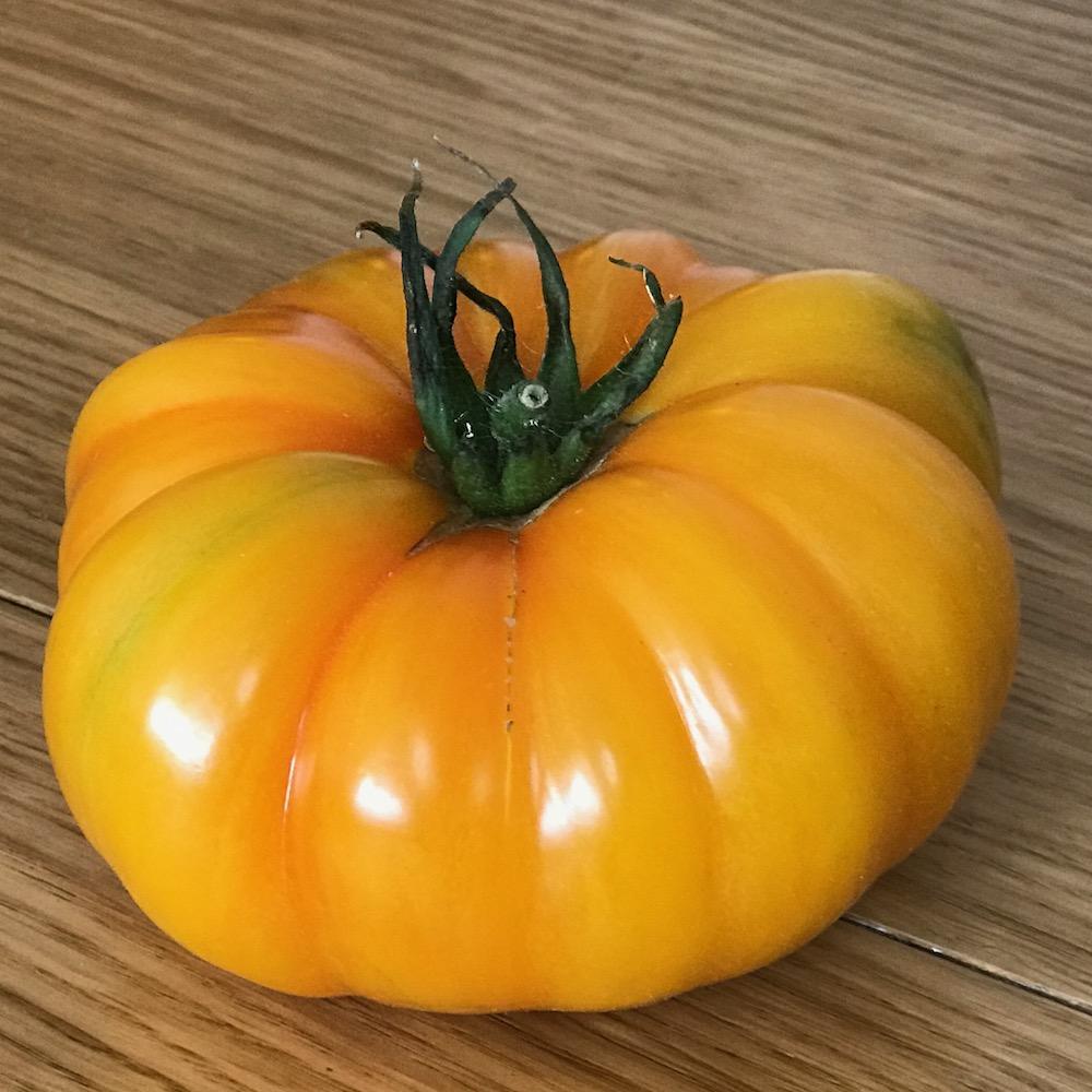 Tomate Ananas pleine terre - 1 kg