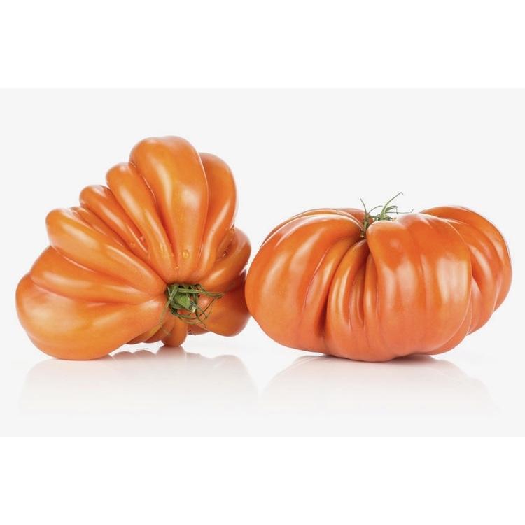 Tomate coeur de boeuf pleine terre - 1 kg